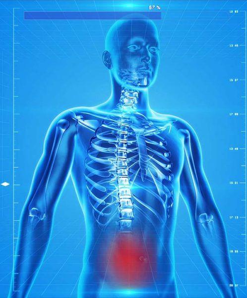 e-rwakulszowa szkielet o stronie