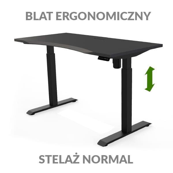 Biurko podnoszone elektycznie Fly Desk czarno-czarne. Blat ergonomiczny / stelaż NORMAL