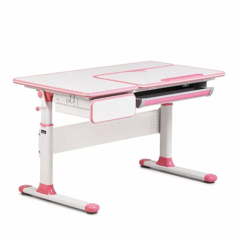Biurko regulowane dla dziecka Fun Desk Cubby Toru Pink
